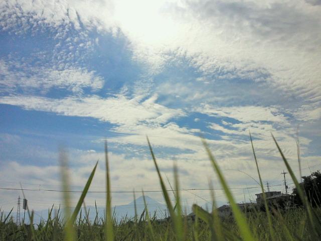 バイク便20111019amoto.jpg